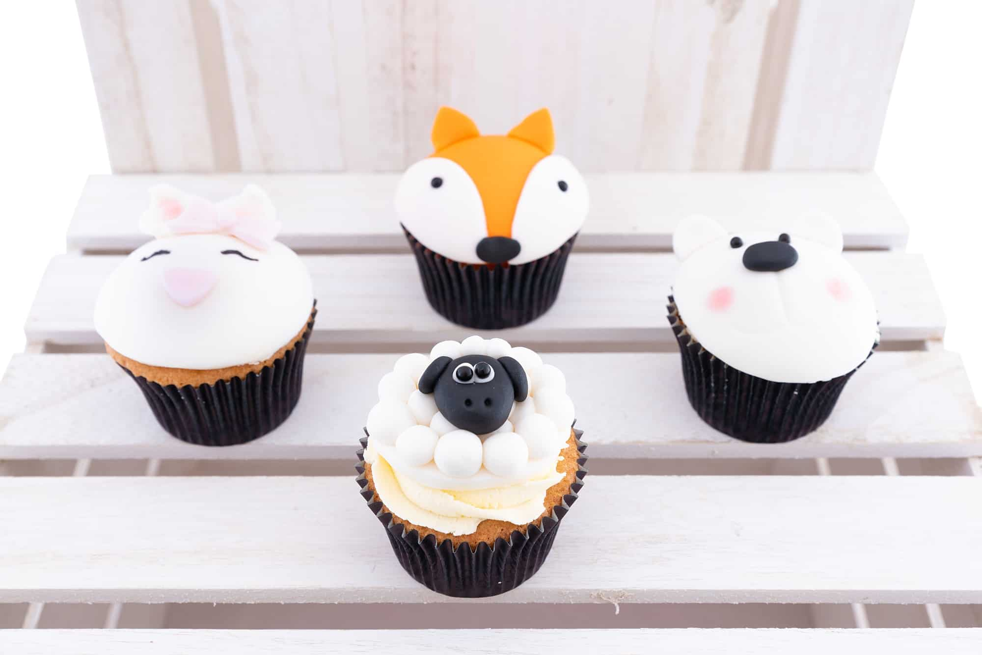 www.blossombakery.co.uk products i have photographed - animal cakes