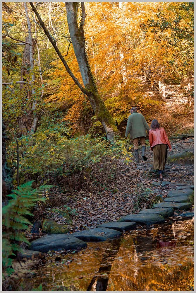 this images shows the stepping stone at   Rivelin Valley sheffield
